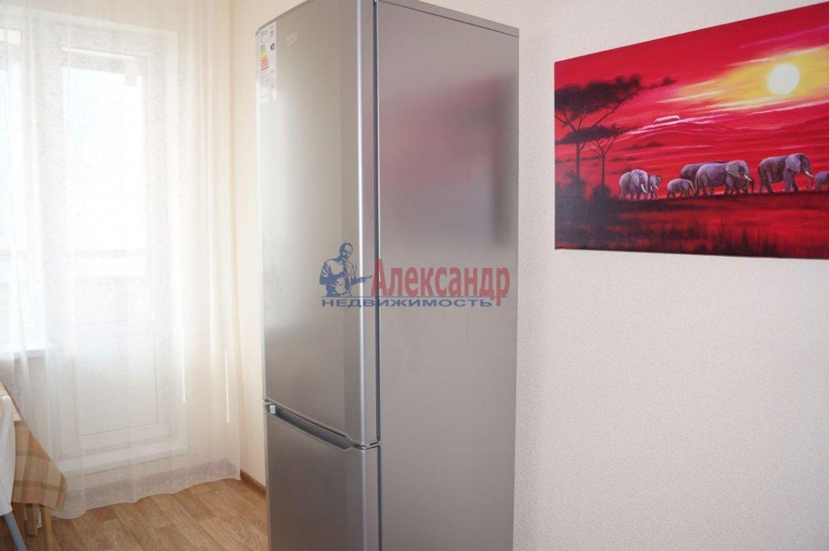 1-комнатная квартира (35м2) в аренду по адресу Ириновский пр., 34— фото 11 из 11