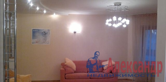 1-комнатная квартира (41м2) в аренду по адресу Наличная ул., 48— фото 3 из 4