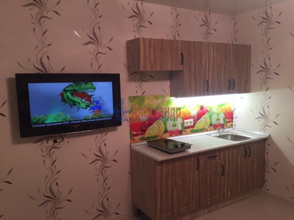 1-комнатная квартира (27м2) в аренду по адресу Мурино пос., Авиаторов Балтики пр., 5— фото 2 из 5