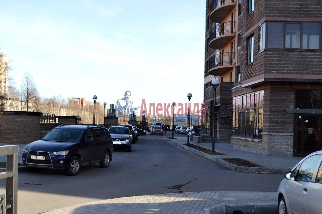 1-комнатная квартира (44м2) в аренду по адресу Бутлерова ул., 11— фото 14 из 16