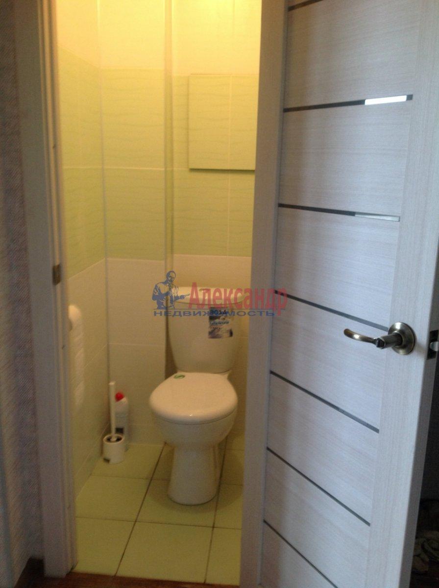 1-комнатная квартира (36м2) в аренду по адресу Просвещения просп., 99— фото 2 из 5