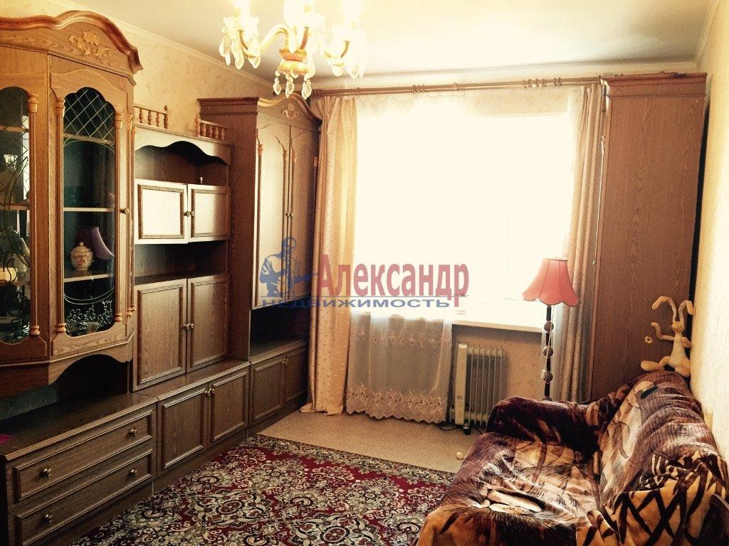 1-комнатная квартира (39м2) в аренду по адресу Просвещения пр., 53— фото 1 из 4
