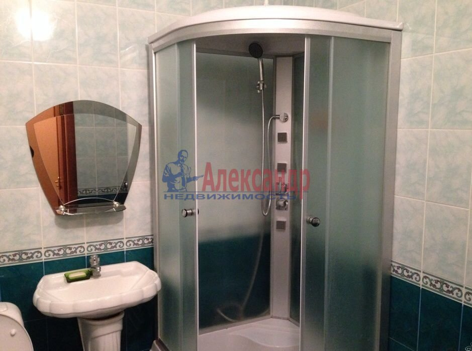 1-комнатная квартира (41м2) в аренду по адресу Савушкина ул., 118— фото 3 из 5