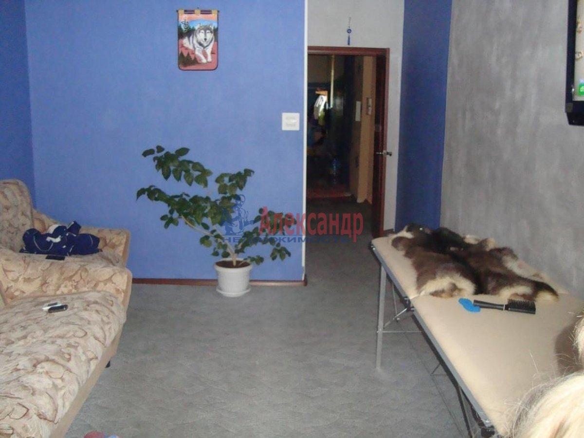 2-комнатная квартира (55м2) в аренду по адресу Просвещения пр., 64— фото 3 из 3