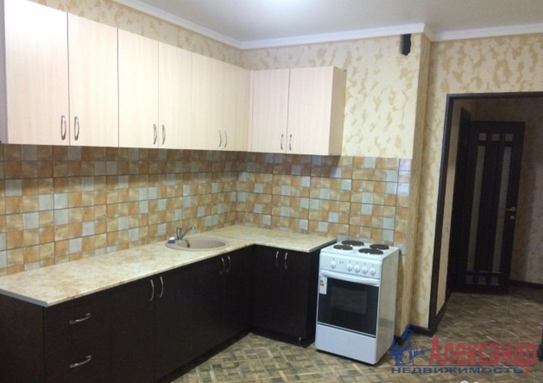1-комнатная квартира (45м2) в аренду по адресу Гаккелевская ул., 33— фото 2 из 2