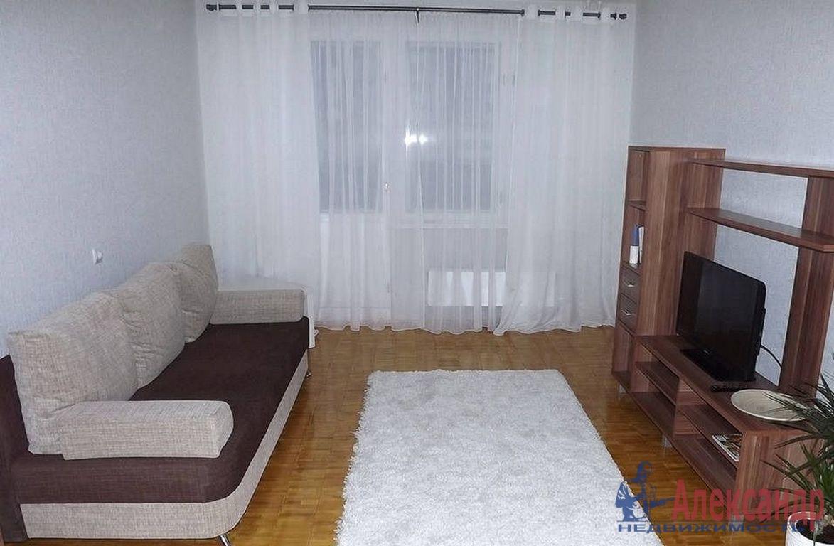 2-комнатная квартира (46м2) в аренду по адресу 2 Муринский пр., 10— фото 1 из 2