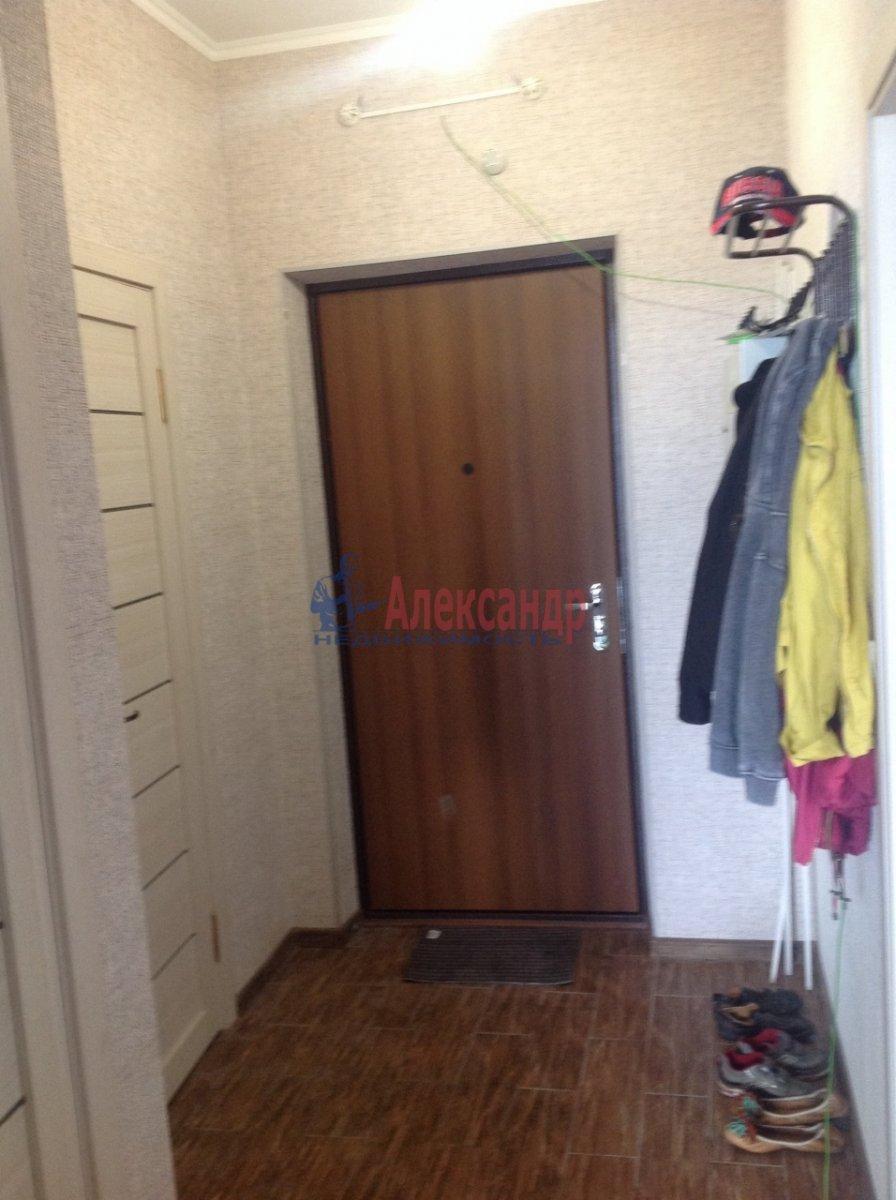 1-комнатная квартира (36м2) в аренду по адресу Просвещения просп., 99— фото 5 из 5