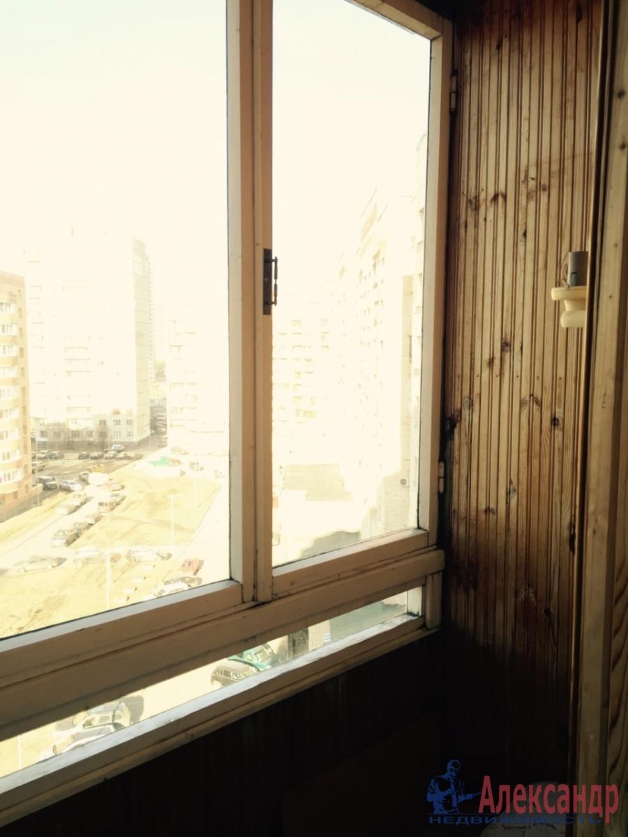1-комнатная квартира (39м2) в аренду по адресу Просвещения пр., 53— фото 4 из 4