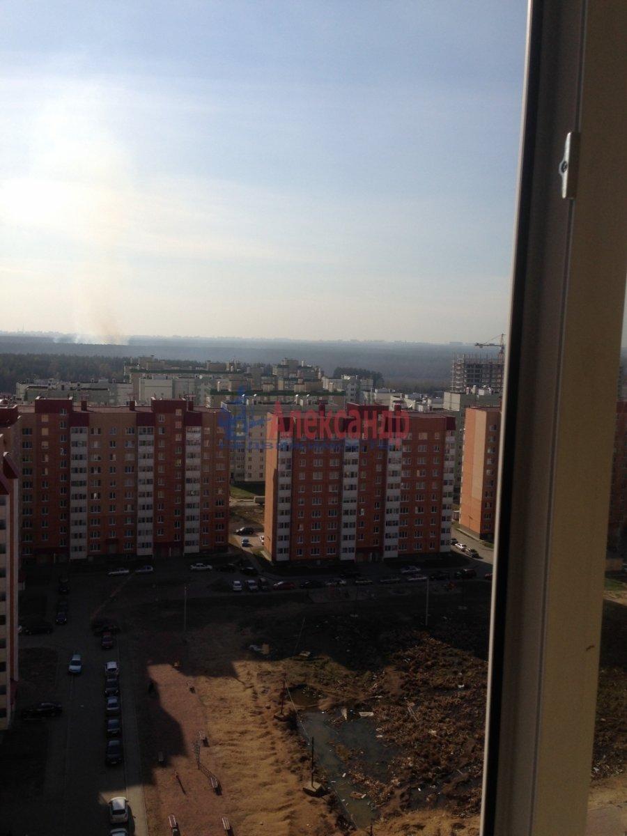 1-комнатная квартира (38м2) в аренду по адресу Всеволожск г., Южный мкр., 3— фото 7 из 7