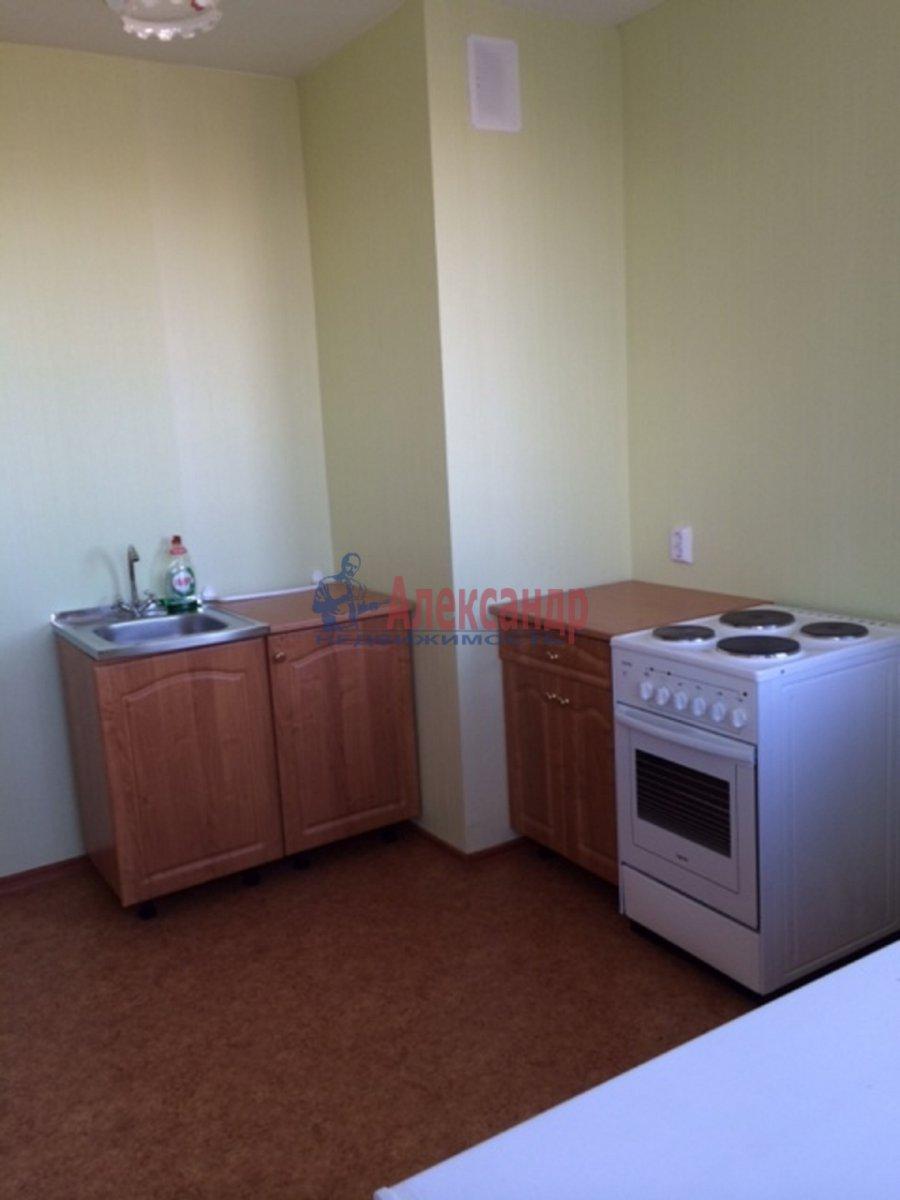1-комнатная квартира (32м2) в аренду по адресу Парголово пос., Михаила Дудина ул., 23— фото 1 из 4