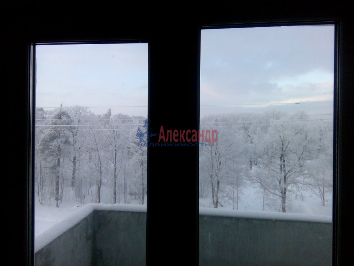 2-комнатная квартира (60м2) в аренду по адресу Пушкин г., Красносельское шос., 55— фото 3 из 8