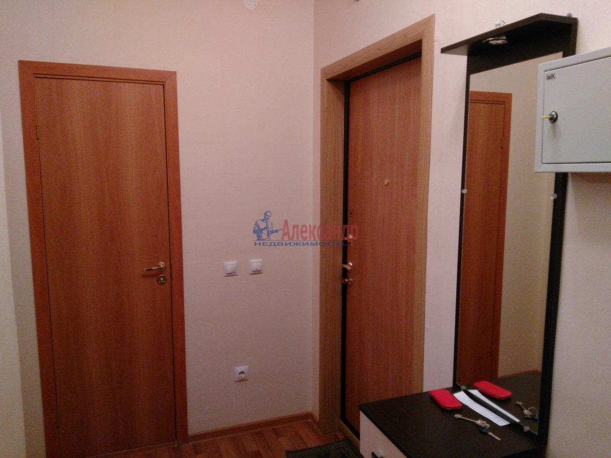 1-комнатная квартира (37м2) в аренду по адресу Юнтоловский пр., 49— фото 6 из 9