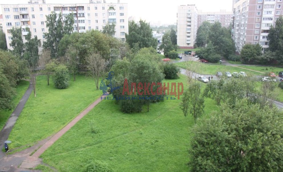 1-комнатная квартира (33м2) в аренду по адресу Солидарности пр., 9— фото 2 из 2