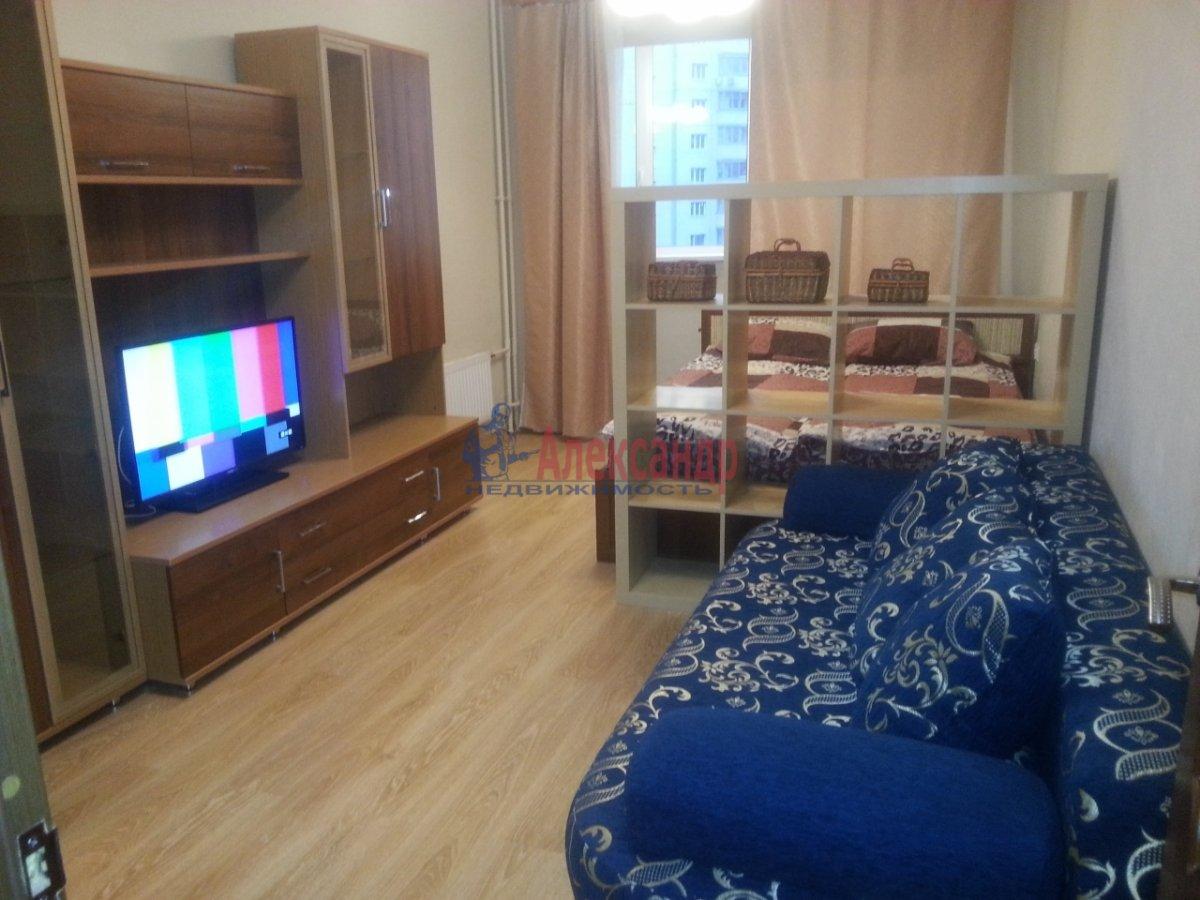 1-комнатная квартира (25м2) в аренду по адресу Луначарского пр., 11— фото 2 из 5