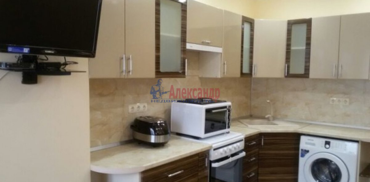 1-комнатная квартира (40м2) в аренду по адресу Индустриальный пр., 40— фото 3 из 4