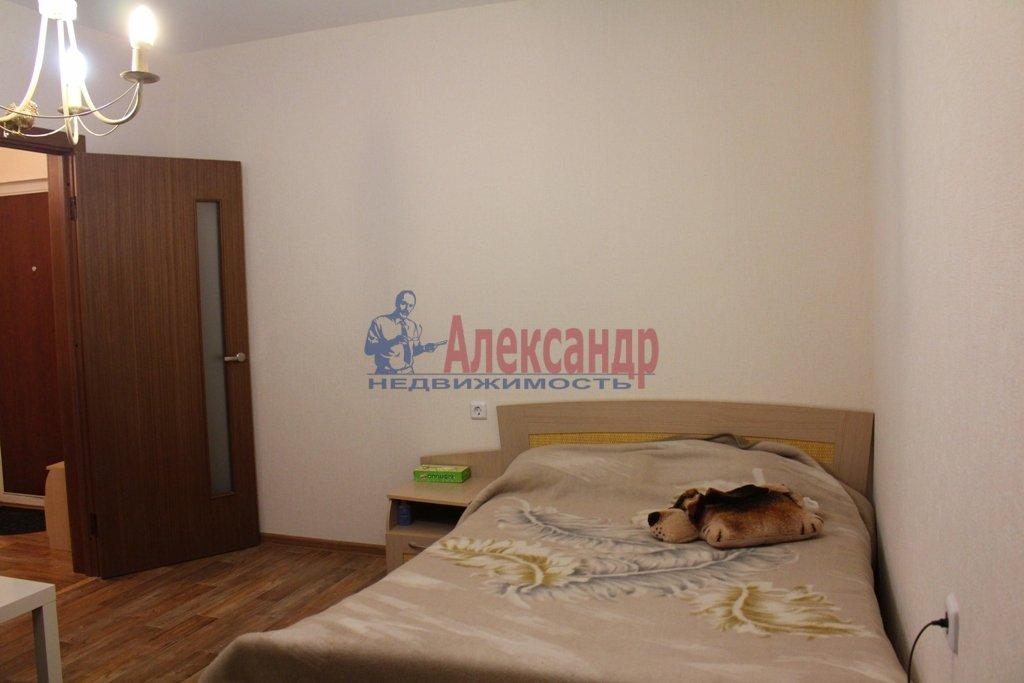 1-комнатная квартира (35м2) в аренду по адресу Съезжинская ул., 19— фото 5 из 5