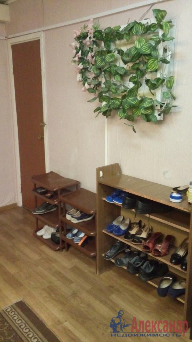Комната в 3-комнатной квартире (100м2) в аренду по адресу Суздальский просп., 57— фото 6 из 16