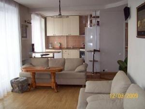 2-комнатная квартира (50м2) в аренду по адресу Петровская наб., 4— фото 2 из 13