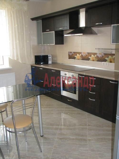 1-комнатная квартира (45м2) в аренду по адресу Кронштадтская ул., 13— фото 5 из 9