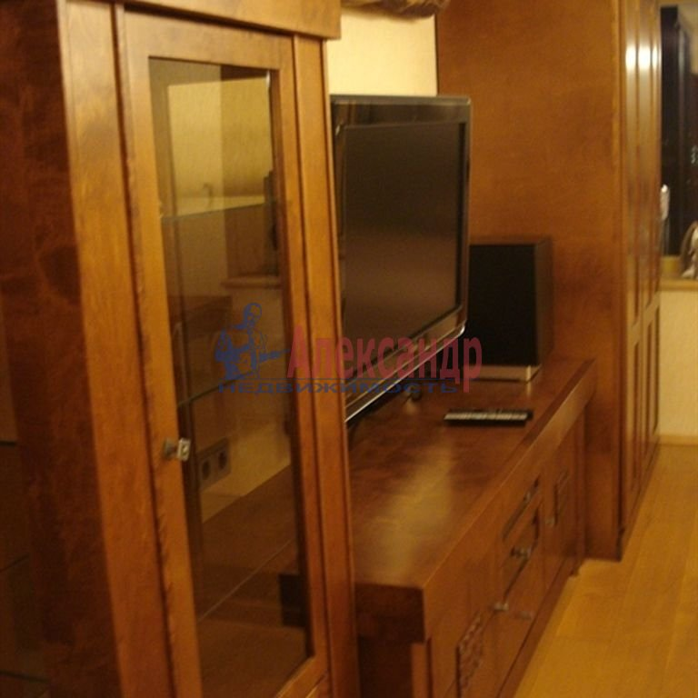 1-комнатная квартира (48м2) в аренду по адресу Светлановский просп., 43— фото 7 из 7