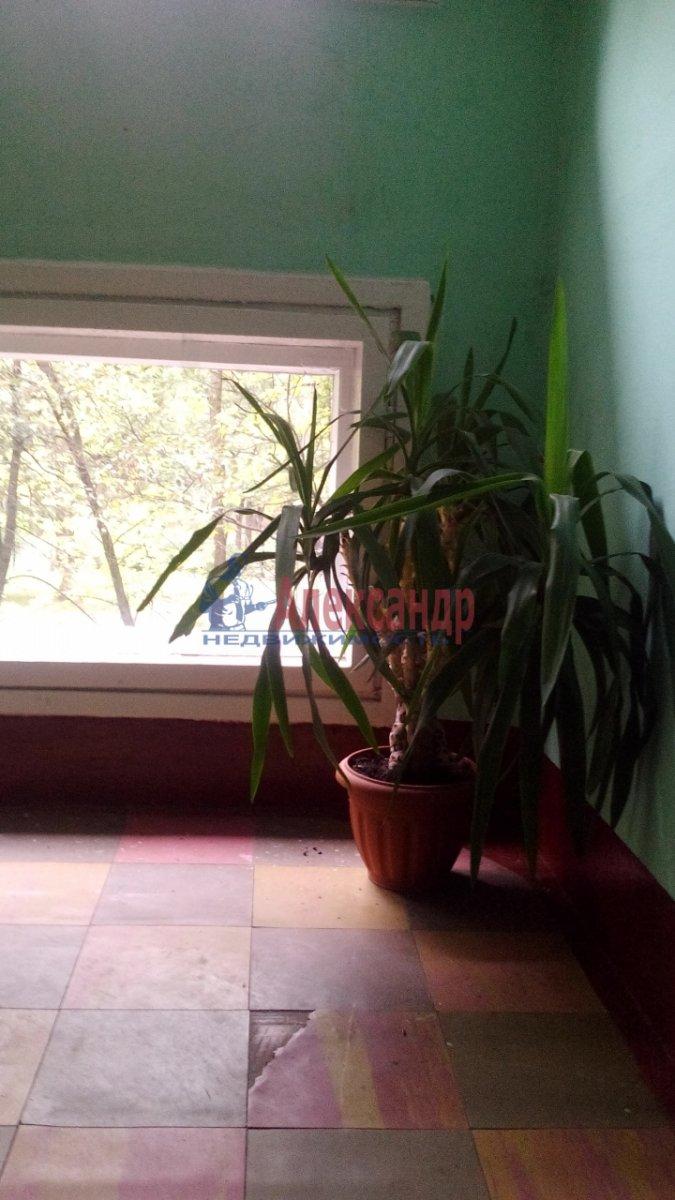 Комната в 2-комнатной квартире (67м2) в аренду по адресу Суздальский просп., 91— фото 6 из 8