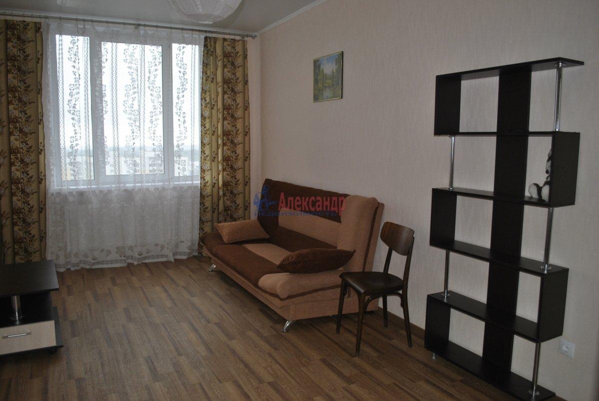 1-комнатная квартира (44м2) в аренду по адресу Лыжный пер., 4— фото 1 из 19