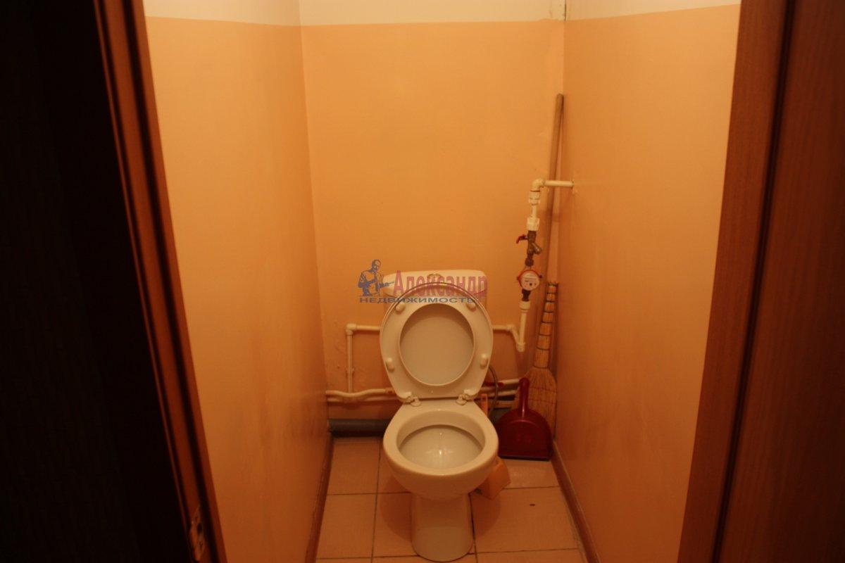 2-комнатная квартира (58м2) в аренду по адресу Богатырский пр., 49— фото 12 из 23