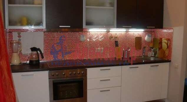 2-комнатная квартира (62м2) в аренду по адресу Богатырский пр., 25— фото 11 из 14