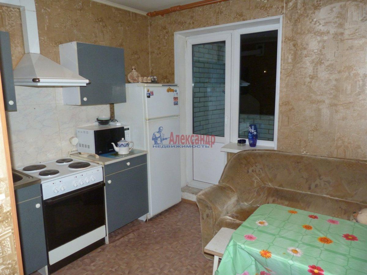 1-комнатная квартира (40м2) в аренду по адресу Константиновский пр., 18— фото 4 из 10