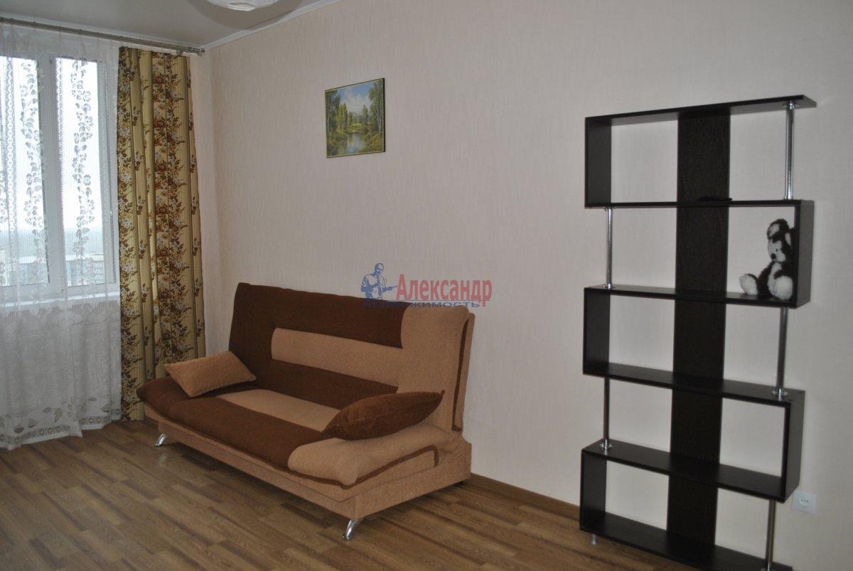 1-комнатная квартира (44м2) в аренду по адресу Лыжный пер., 4— фото 3 из 19