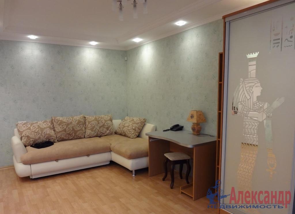 1-комнатная квартира (40м2) в аренду по адресу Камышовая ул., 7— фото 1 из 2