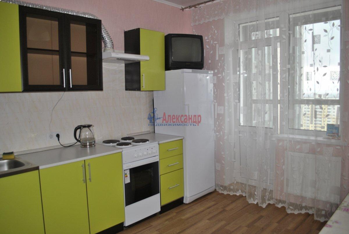 1-комнатная квартира (44м2) в аренду по адресу Лыжный пер., 4— фото 4 из 19
