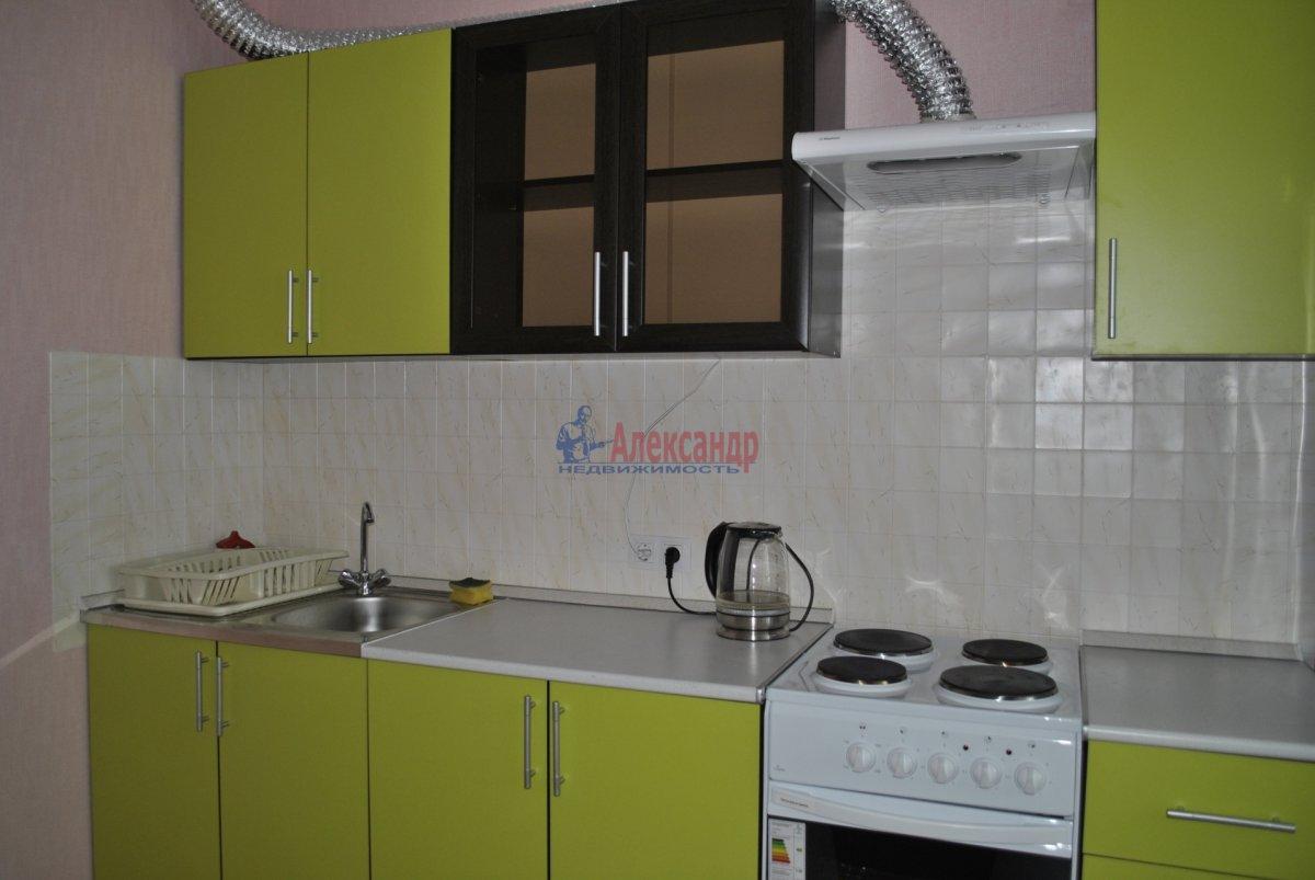 1-комнатная квартира (44м2) в аренду по адресу Лыжный пер., 4— фото 5 из 19