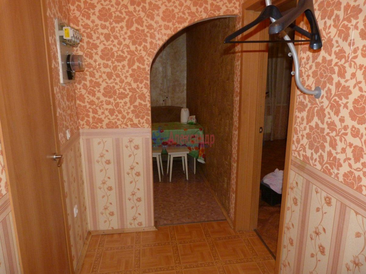 1-комнатная квартира (40м2) в аренду по адресу Константиновский пр., 18— фото 9 из 10