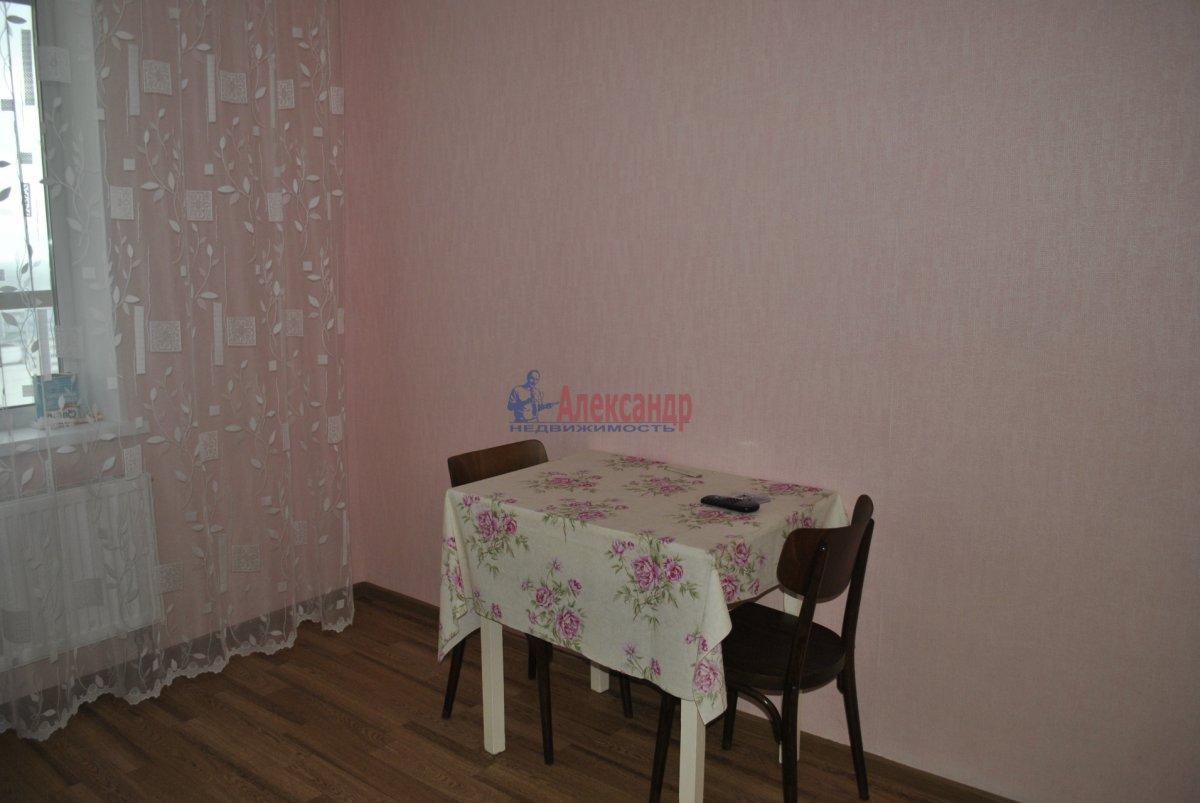 1-комнатная квартира (44м2) в аренду по адресу Лыжный пер., 4— фото 6 из 19