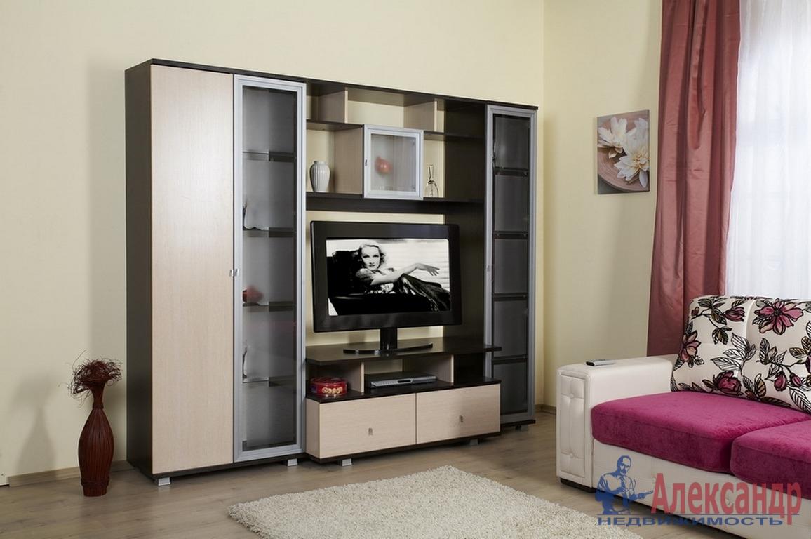 1-комнатная квартира (39м2) в аренду по адресу Морская наб., 35— фото 1 из 3