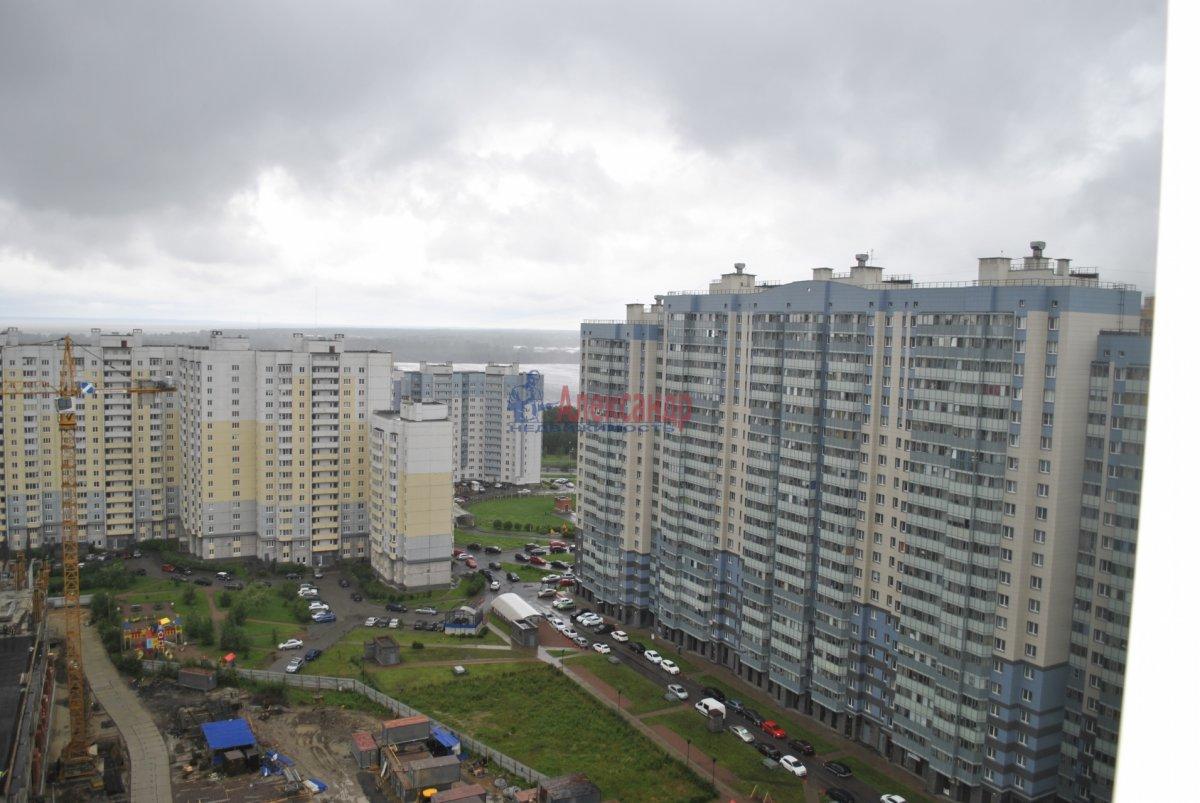 1-комнатная квартира (44м2) в аренду по адресу Лыжный пер., 4— фото 7 из 19