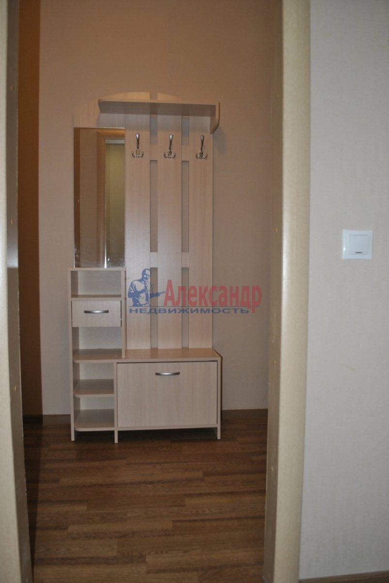 1-комнатная квартира (44м2) в аренду по адресу Лыжный пер., 4— фото 10 из 19