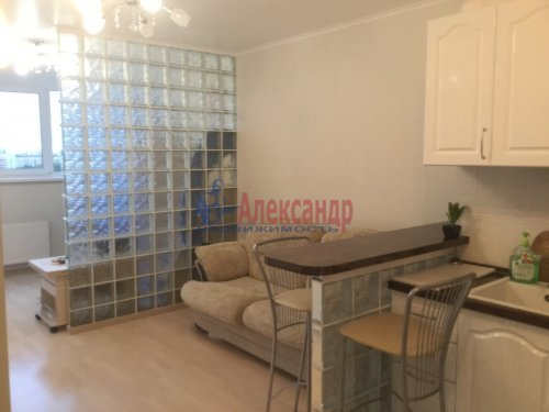 1-комнатная квартира (24м2) на продажу по адресу Орбели ул., 17— фото 5 из 13