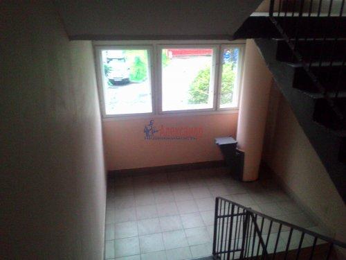 3-комнатная квартира (59м2) на продажу по адресу Авангардная ул., 20— фото 5 из 14