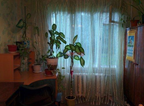 3-комнатная квартира (62м2) на продажу по адресу Седова ул., 87— фото 3 из 12