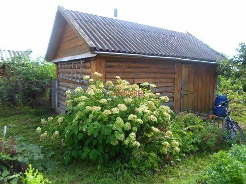 3-комнатная квартира (74м2) на продажу по адресу Снегиревка дер., Майская ул., 1— фото 29 из 38