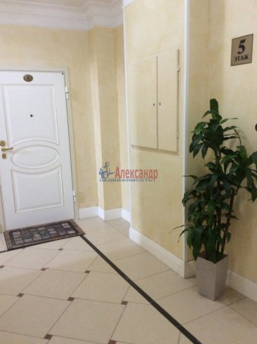 2-комнатная квартира (130м2) на продажу по адресу Профессора Попова ул., 37— фото 4 из 15