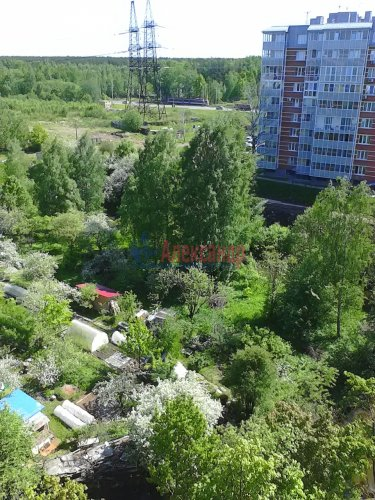 2-комнатная квартира (77м2) на продажу по адресу 2 Жерновская ул., 2/4— фото 30 из 30