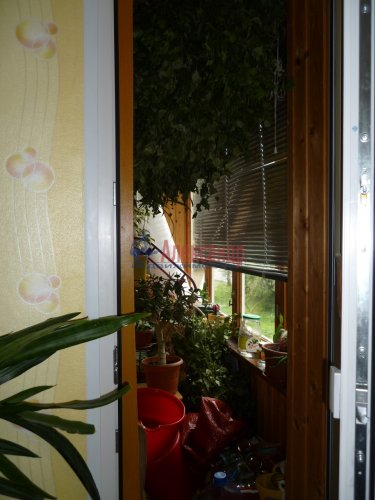 3-комнатная квартира (66м2) на продажу по адресу Всеволожск г., Ленинградская ул., 21— фото 18 из 20