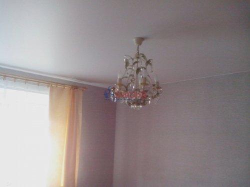 2-комнатная квартира (38м2) на продажу по адресу Всеволожск г., Евграфова ул., 11а— фото 3 из 20