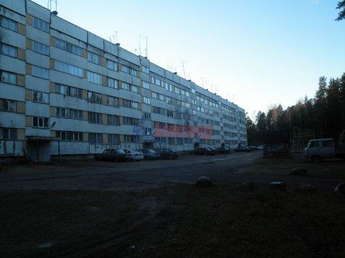 3-комнатная квартира (60м2) на продажу по адресу Сосновый Бор пос., 2— фото 1 из 7