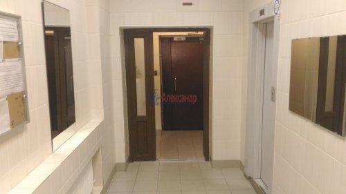 1-комнатная квартира (32м2) на продажу по адресу Мурино пос., Оборонная ул., 2— фото 12 из 12