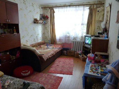 3-комнатная квартира (73м2) на продажу по адресу Новый Свет пос., 42— фото 4 из 16