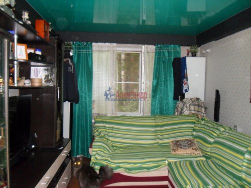 1-комнатная квартира (31м2) на продажу по адресу Карпинского ул., 38— фото 4 из 13